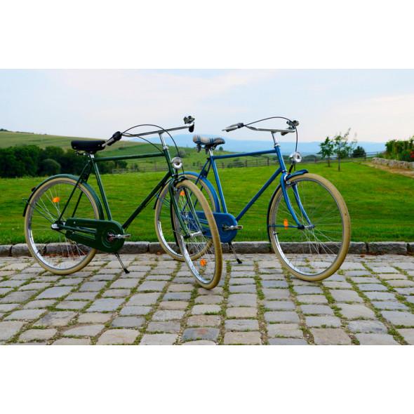 Bicykel Kenzel Luigi