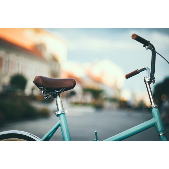 Bicykel Skladačka Pecobikes Deluxe