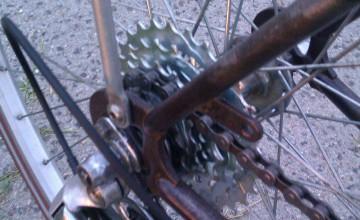 City bikes vintage retro Pecobikes
