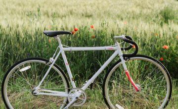 bicykel Fuji Feather1