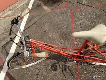 Pecobikes custom bikes